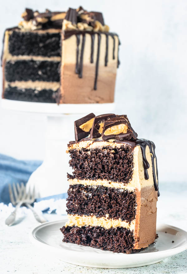 peanut butter and chocolate cake slice