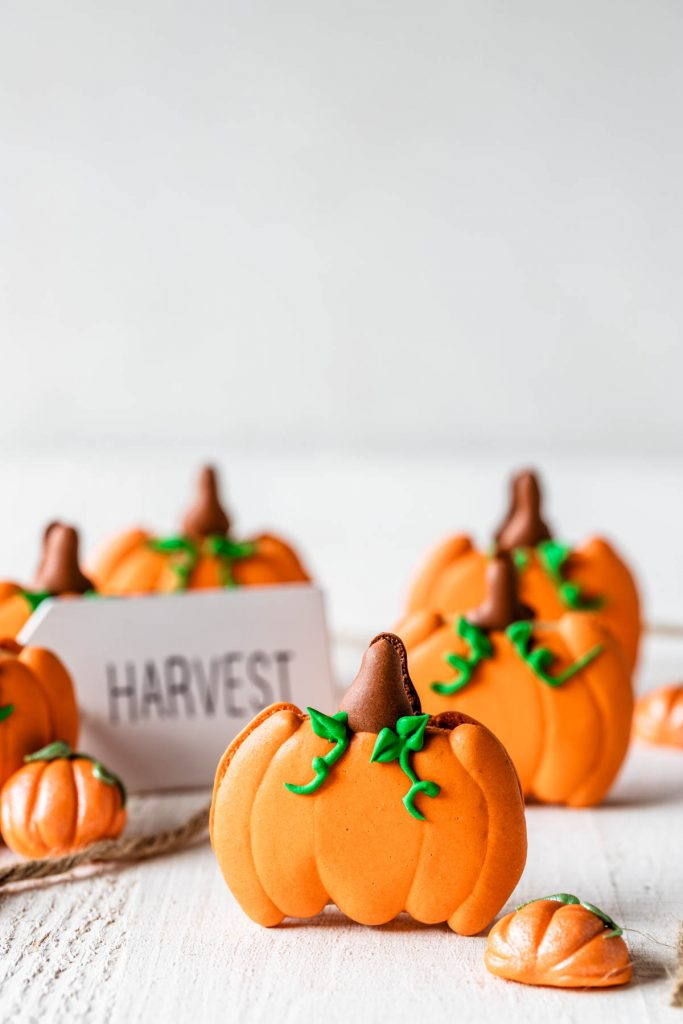 macarons shaped like pumpkins with a sign saying harvest in the back.
