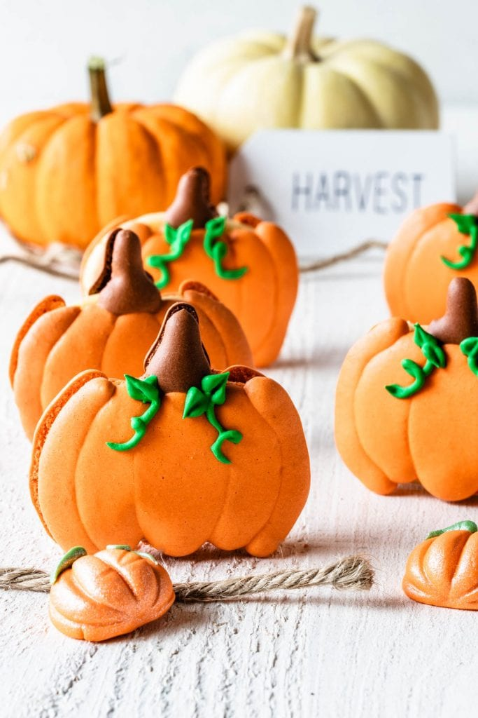 pumpkin macarons shaped like pumpkins with a sign saying harvest in the back.