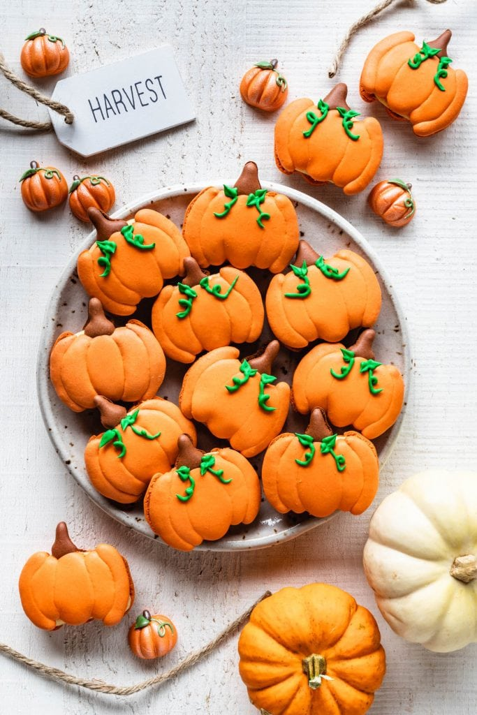 Pumpkin Macarons shaped like pumpkins, on a plate seen from the top with pumpkins around and a sign saying harvest.
