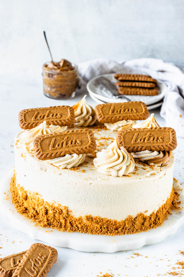 Groovy Biscoff Vegan Marble Cake Pies And Tacos Funny Birthday Cards Online Barepcheapnameinfo