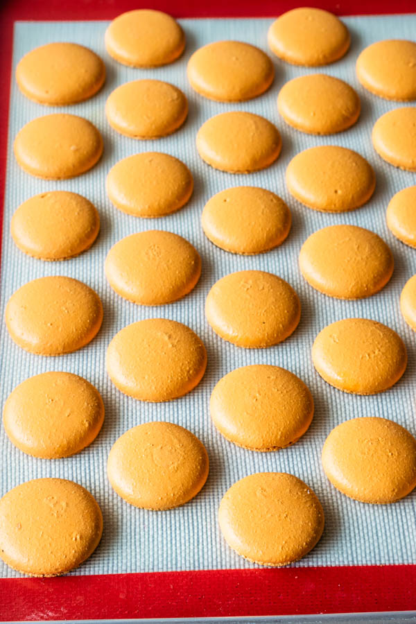 orange Macaron shells
