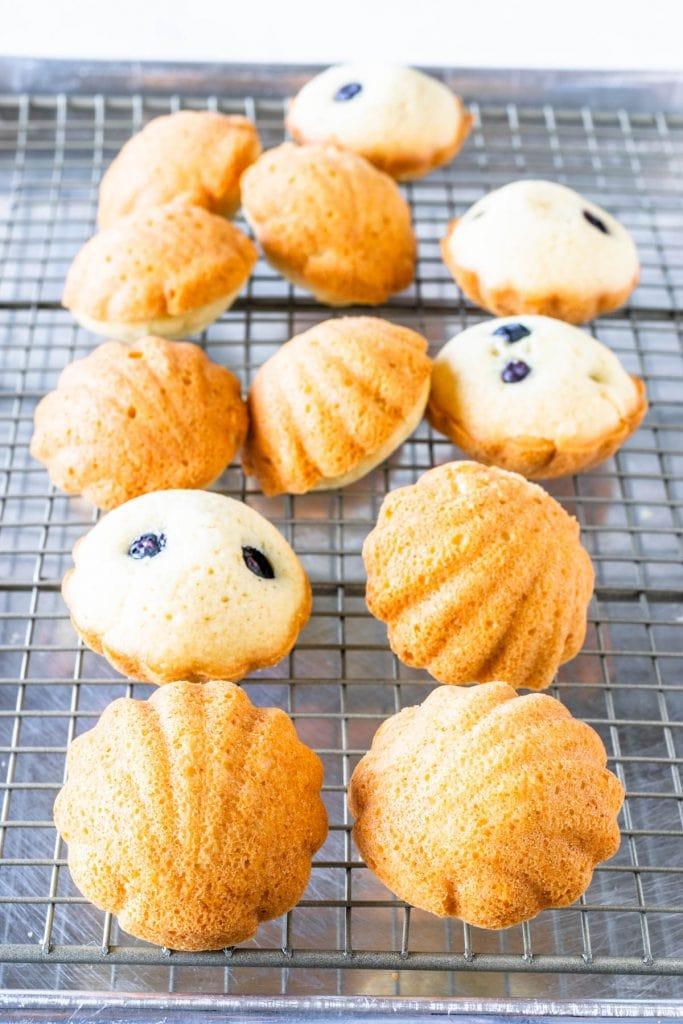 Vegan Lemon Blueberry Madeleines