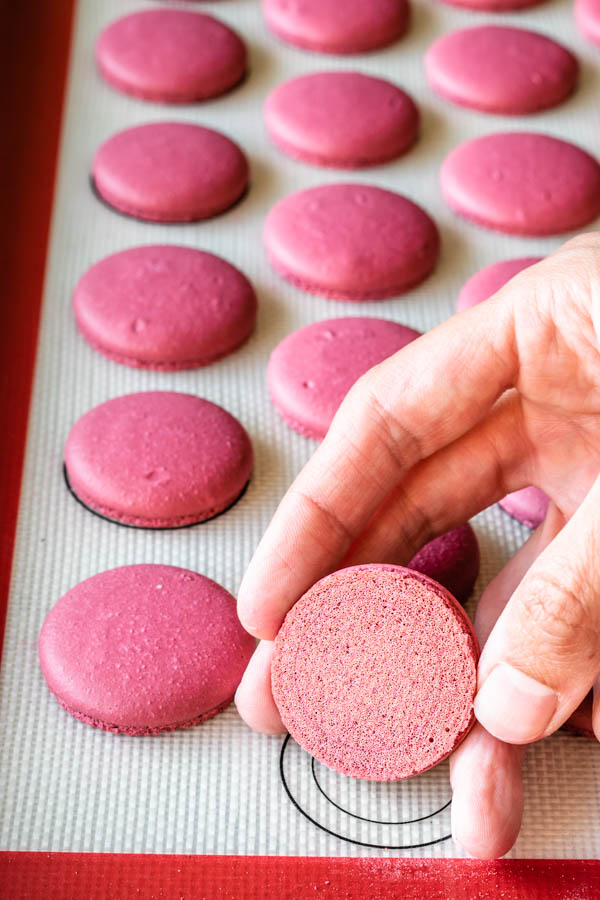 showing the bottom of a pink macaron shell