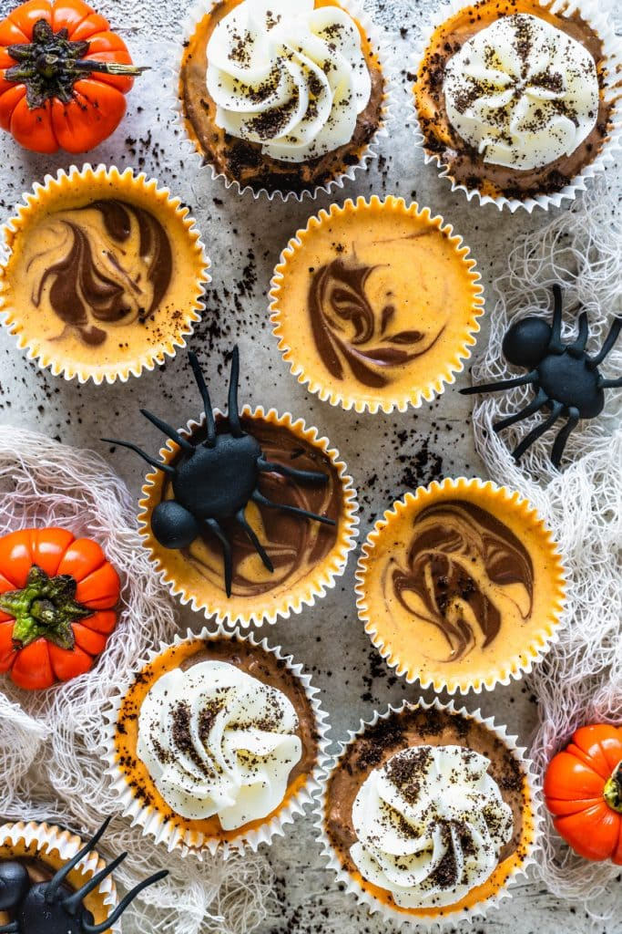 Chocolate Pumpkin Mini Cheesecakes with fondant spiders on top, some are topped with whipped cream and oreo crumbs.