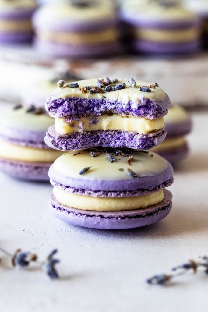 Lavender Macarons dipped in white chocolate and topped with lavender buds stacked and with a bite taken out.