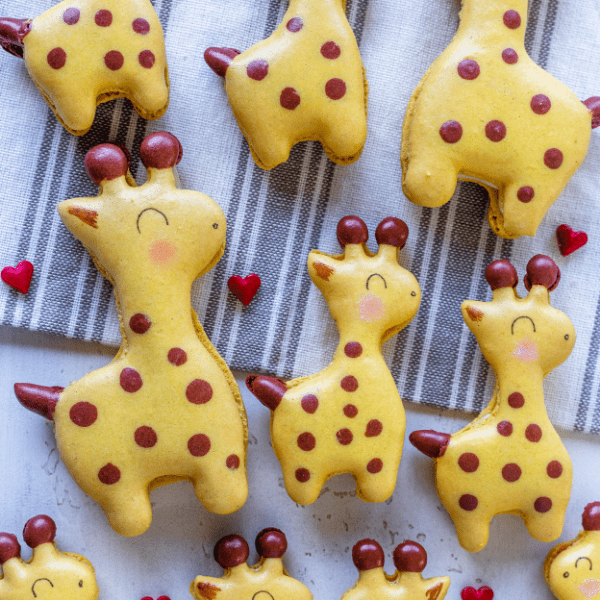 giraffe macarons